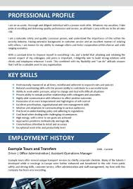 Travel Agent Resume Sample Customer Service Position Cover Letter