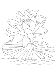 Hard Coloring Pages Of Flowers Fashionadvisorinfo