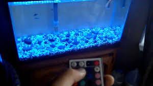 fish tank lighting ideas. Fish Tank Led Lighting And Custom RGB LED Aquarium Light YouTube With Maxresdefault 1280x720px Ideas