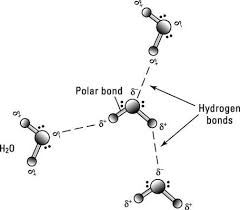 4 Types Of Chemical Bonds Dummies