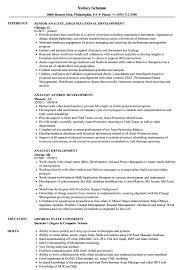 Analyst Development Resume Samples Velvet Jobs