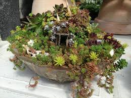 Small Picture 156 best Fairy Garden Designs images on Pinterest Fairies garden