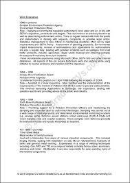 Cv Order Sample Cvs Uk And International Designed By Bradley Cvs