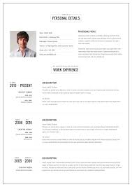 Template The Megan Resume Professional Word Template With Picture