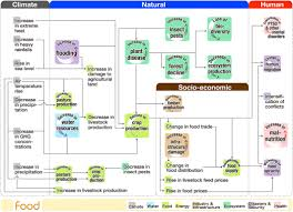 Flow Chart Of Causes Of Global Warming Visualizing Cause And Effect Of Global Warming About