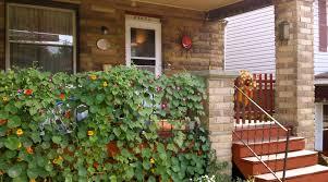 nice diy garden wall art garden wall decor images garden brick wall decoration ideas kitchen garden wall decoration ideas within lawn diy garden wall art