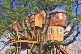 10 Of The Most Stunning Tree Houses You Can Rent In The UKTreehouse Scotland