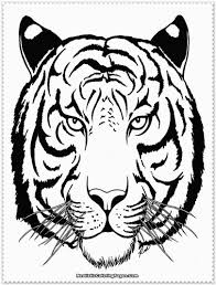 Small Picture Beautiful Coloring Page Of A Tiger 52 On Picture Coloring Page
