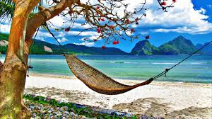 Image result for beach hammock abstract