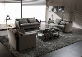 the shape of the area rug should be in agreement with the design of your living room circular or octennial shaped rugs will give your room flair and elan