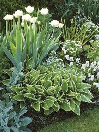Small Picture 25 best Flower beds ideas on Pinterest Front flower beds Front