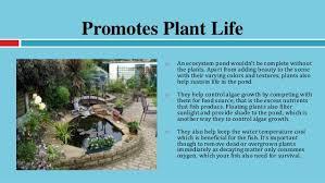 5 benefits eco friendly