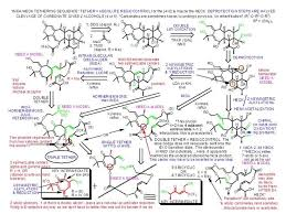 best organic chemistry images organic chemistry molecule of the month working synthetic strategy proposal