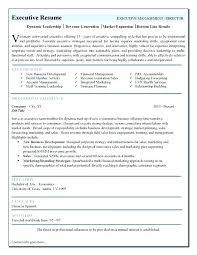 Executive Resume Templates Word Classy Executive Resume Template Word Marketing Cv Templates Administrati