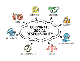 Eco Design Standards 10 Global Companies That Are Environmentally Friendly Virgin