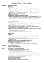 Dba Manager Resume Samples Velvet Jobs