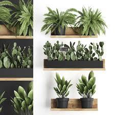 plants wall decor vertical 3d model