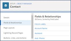 How To Add A Salesforce Org Chart Using Custom Fields