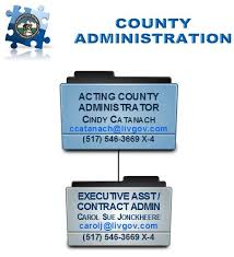 Michigan Registration Fee Chart County Administration Administration