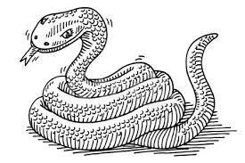 Serpente Disegno Degli Animali Premium Clipart Clipartlogocom