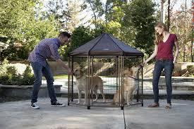 the original pet gazebo medium advantek marketing advantek the original pet gazebo outdoor kennel