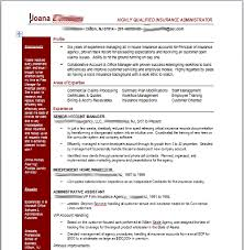 Insurance Professional Resume Job Search Superhero