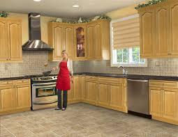 Design My Kitchen 5 Startling Design My Kitchen Gentianaco Remodelling . Photo