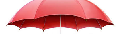 Umbrella Insurance Quote Delectable Texas Umbrella Insurance Dallas Ft Worth Al Boenker Insurance