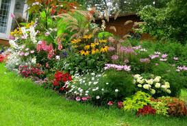 Small Picture 32 Images Magnificent Garden Design Creativities Ambitoco