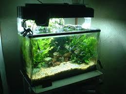 Freshwater Fish Tank Temperature Chart Freshwater Aquarium Wikipedia
