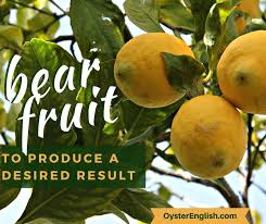 Idiom <b>bear fruit</b>: Meaning and sentence examples