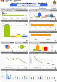 audit of hr data integrity human resources dashboard example