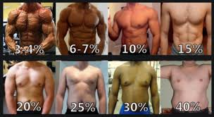 Men S Body Fat Chart The Secret To A Flat Stomach And Six Pack Abs
