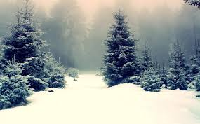 snow backgrounds tumblr. Delighful Tumblr Snow Background Tumblr 6 In Snow Backgrounds Tumblr L