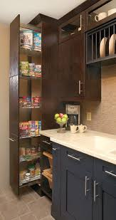 kitchen craft design. contemporary kitchen photo by craft cabinetry - homeclick community design d
