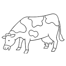 Small Picture Top 15 Free Printable Cow Coloring Pages Online