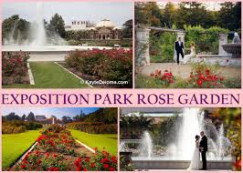 intimate wedding spot in la the knot exposition park rose garden