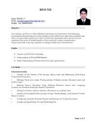 Pdf Resume New Sap CV PDF