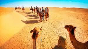 Experience Adventure: Packed Dubai Desert Safari - One Travel Girl