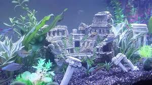 Mario Brothers Aquarium Decorations Acuarios De Agua Dulce Buscar Con Google Vidrieras Pinterest