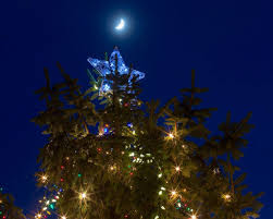 Boiling Springs Pa Christmas Tree Lighting Brighten Your Holidays At These Central Pa Christmas Tree