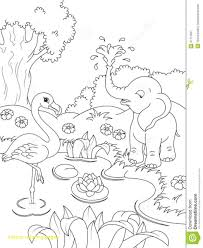 natureoloring pages free printable for s kindergarten