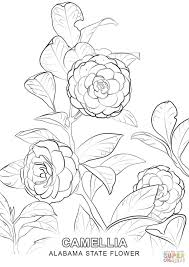 Small Picture Alabama State Flower coloring page Free Printable Coloring Pages