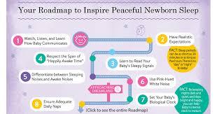 Baby Sleep Cycle Chart Newborn Sleep A Discussion With Elizabeth Pantley