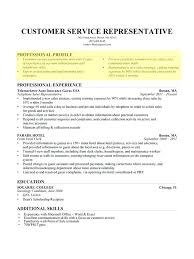 Professional Looking Resume How To Make A Professional Looking