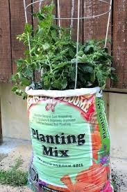 best soil for vegetable garden. vegetable garden soil mixture brilliant potting for best ideas about bags on .