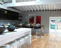 House Beautiful Kitchen Of The Year 2010 Jeff Lewis (2)