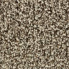 Shaw Color Debut Frieze Carpet 12 Ft Wide at Menards