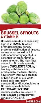 healthcare t to lose weight brussel sprouts and vitamin k benefits healthy eating sprouts vitamins and weight loss