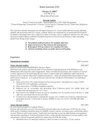 Internal Resume Template Basic Resume Template Pythonic Me